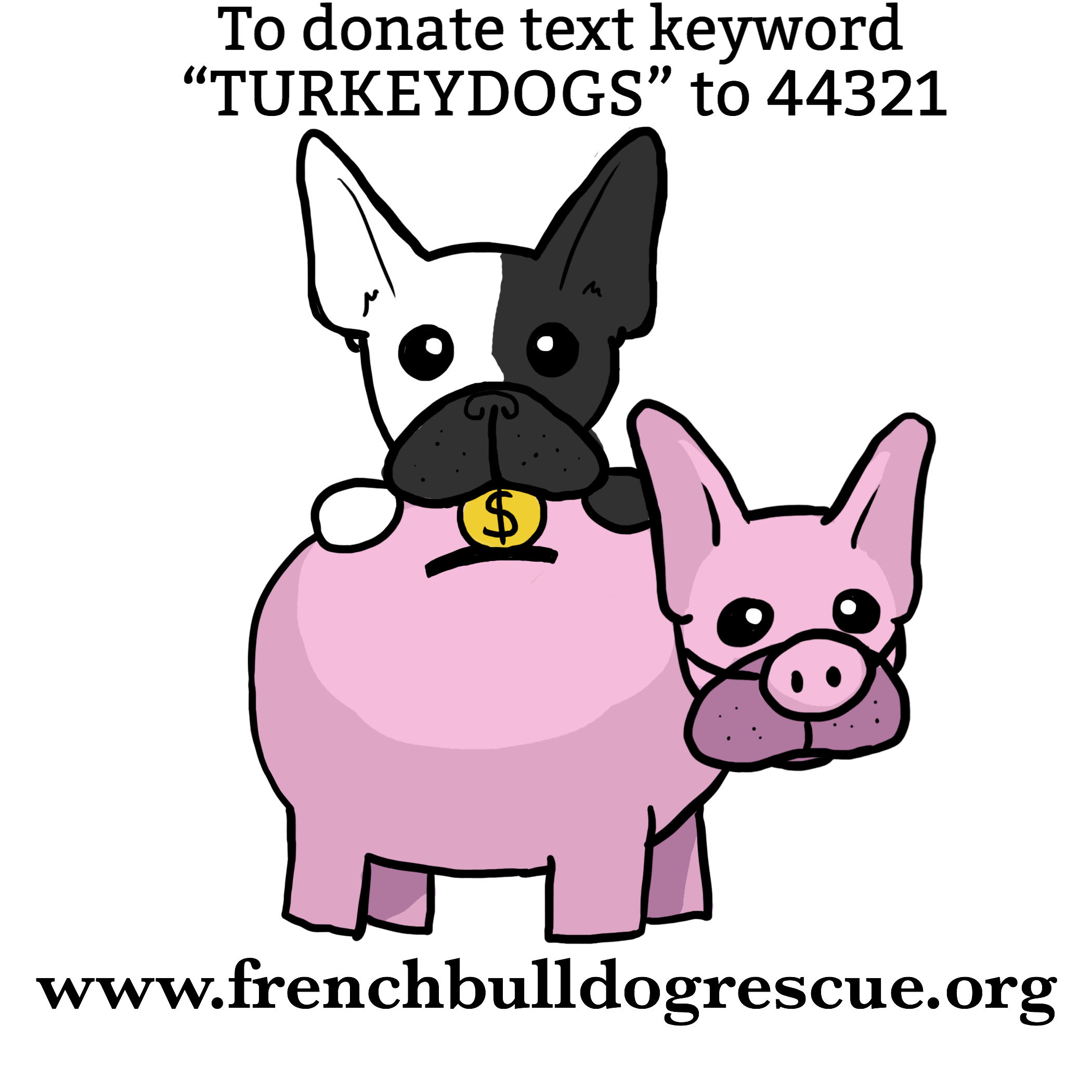 Donate Now | Help FBRN's Homeless Turkish Frenchies by